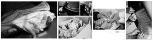 SErvizi fotografici matrimonio di Marina Caccia e Liste nozze da righetti mobili